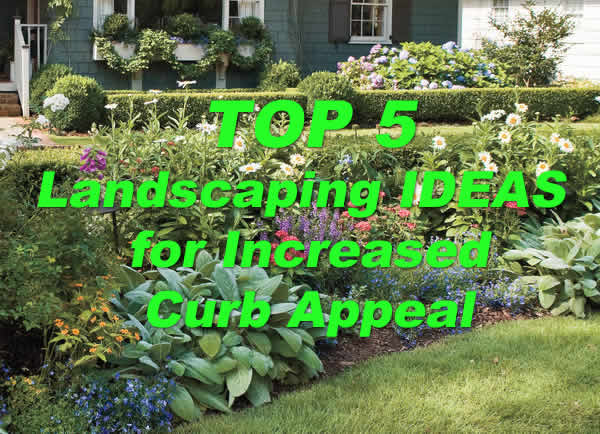 Top 5 Landscaping Ideas for Increased Curb Appeal